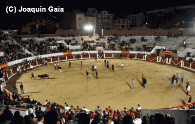 """Capea Nocturna o """"Apagón"""" en Arenas de San Pedro"""