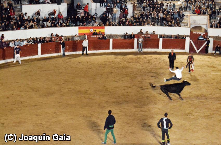 "Capea Nocturna ""Apagón"" de Arenas de San Pedro 2012"