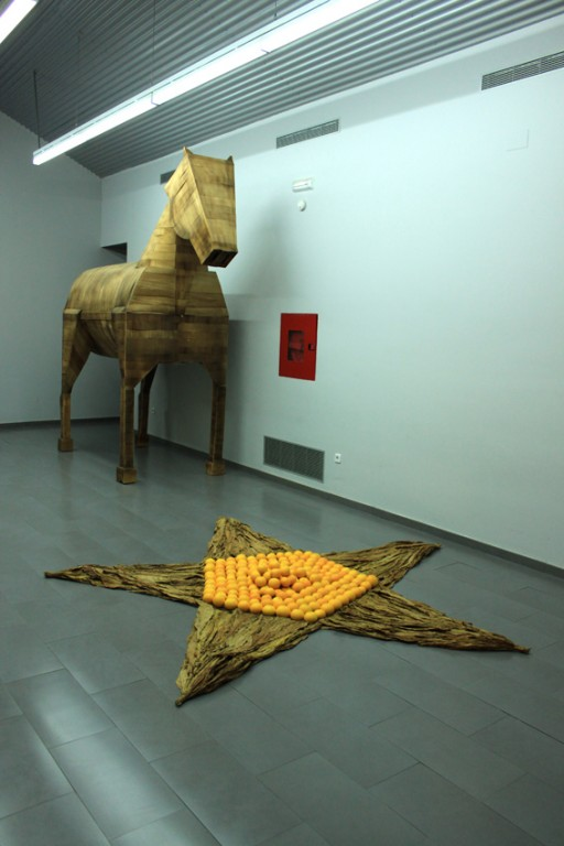 Una estrella dirige al caballo de Troya-Candeleda-CarlosDeGredos