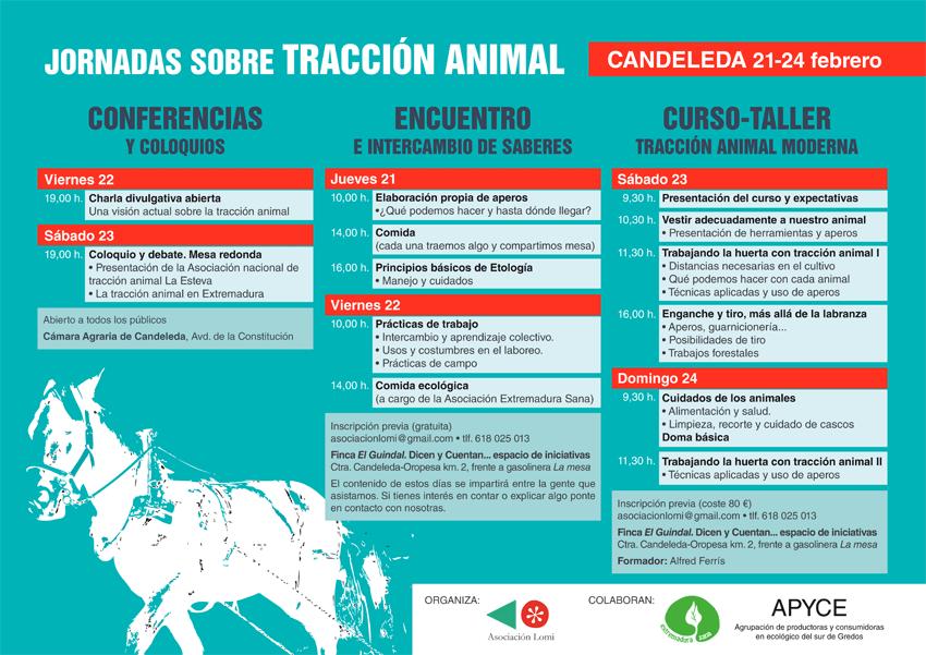 Jornadas sobre Tracción Animal en Candeleda en Febrero de 2013