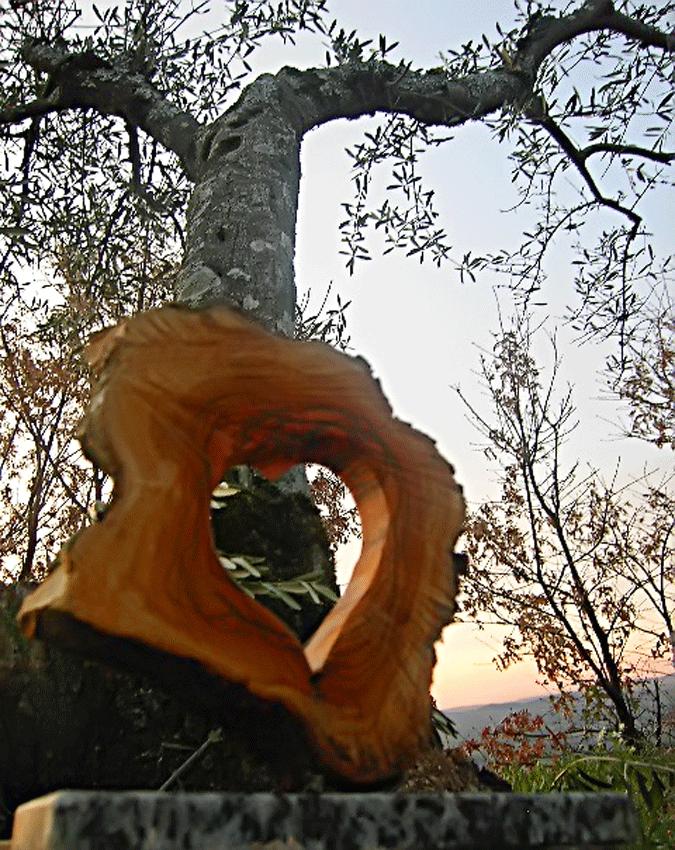 I Premios Corazón de Olivo - Valle del Tiétar - Sierra de Gredos - TiétarTeVe