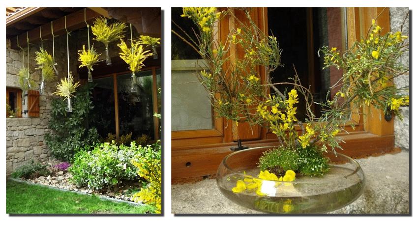 Concurso Decoración con Piornos en Flor en Gredos - TiétarTeVe