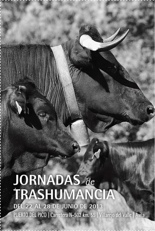 XI Jornadas Trashumancia 2013 - TiétarTeVe