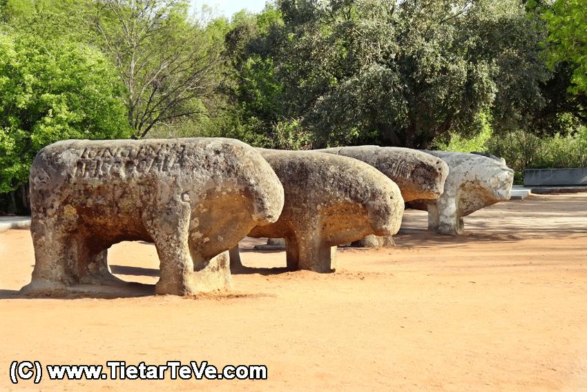 Toros de Guisando - TiétarTeVe