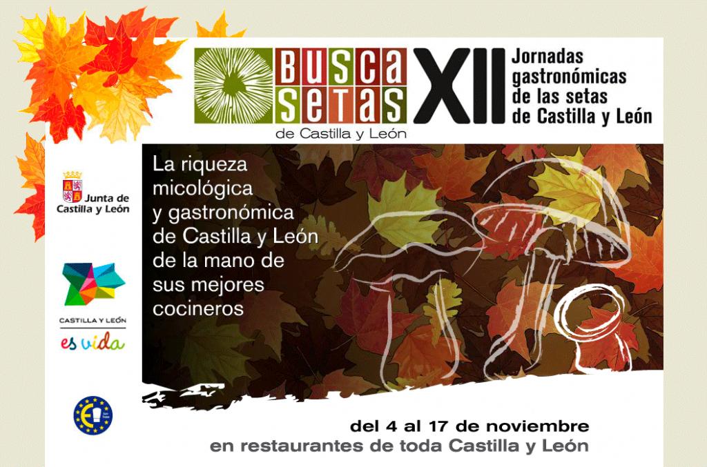 Buscasetas 2013 en Castilla y León - TiétarTeVe