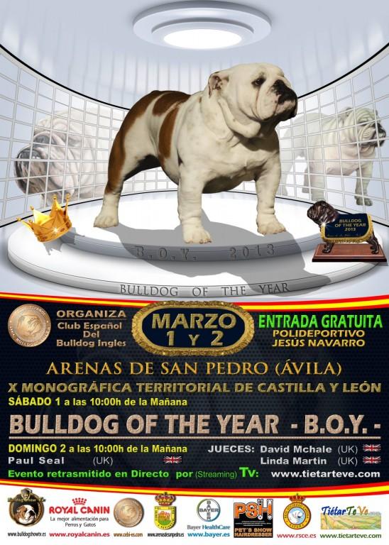 Certamen del Bulldog Inglés en Arenas de San Pedro - 2014 - TiétarTeVe