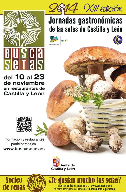 BuscaSetas 2014 - TiétarTeVe