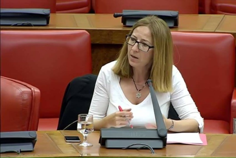 María del Carmen Iglesias, senadora del PSOE por Ávila - TiétarTeVe