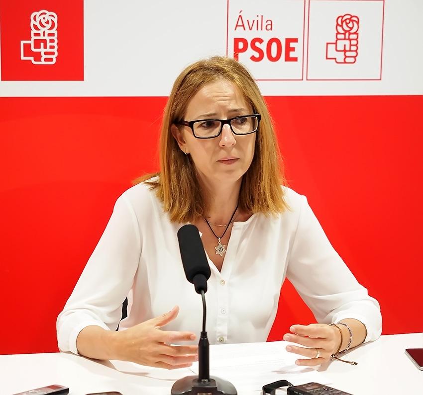 María del Carmen Iglesias - Senadora del PSOE por Ávila - TiétarTeVe