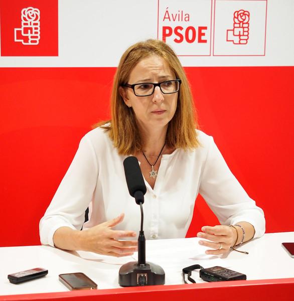 Mª del Carmen Iglesias - Senadora del PSOE por Ávila - TiétarTeVe