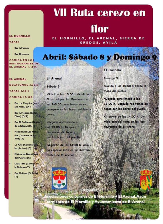 VII Ruta de los Cerezos en Flor en El Arenal y El Hornillo - TiétarTeVe