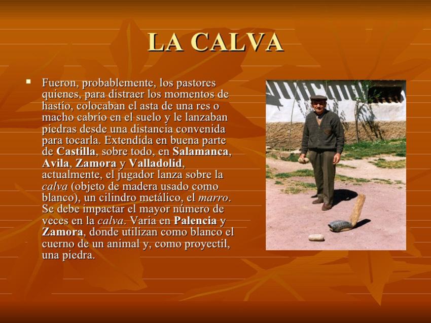 """Subvenciones a """"La Calva"""" de Diputación de Ávila – TiétarTeVe"""