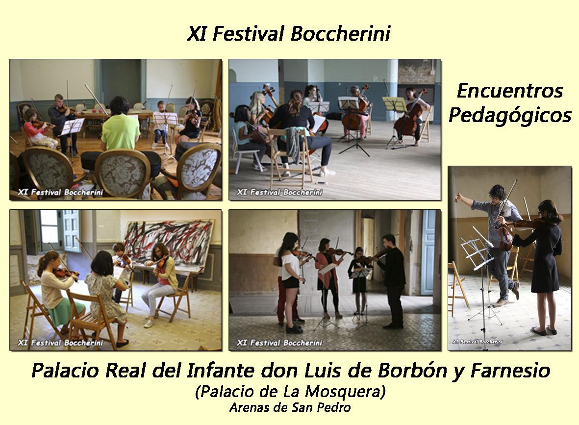 Encuentros Pedagógicos - XI Festival Boccherini - Arenas de San Pedro - TiétarTeVe