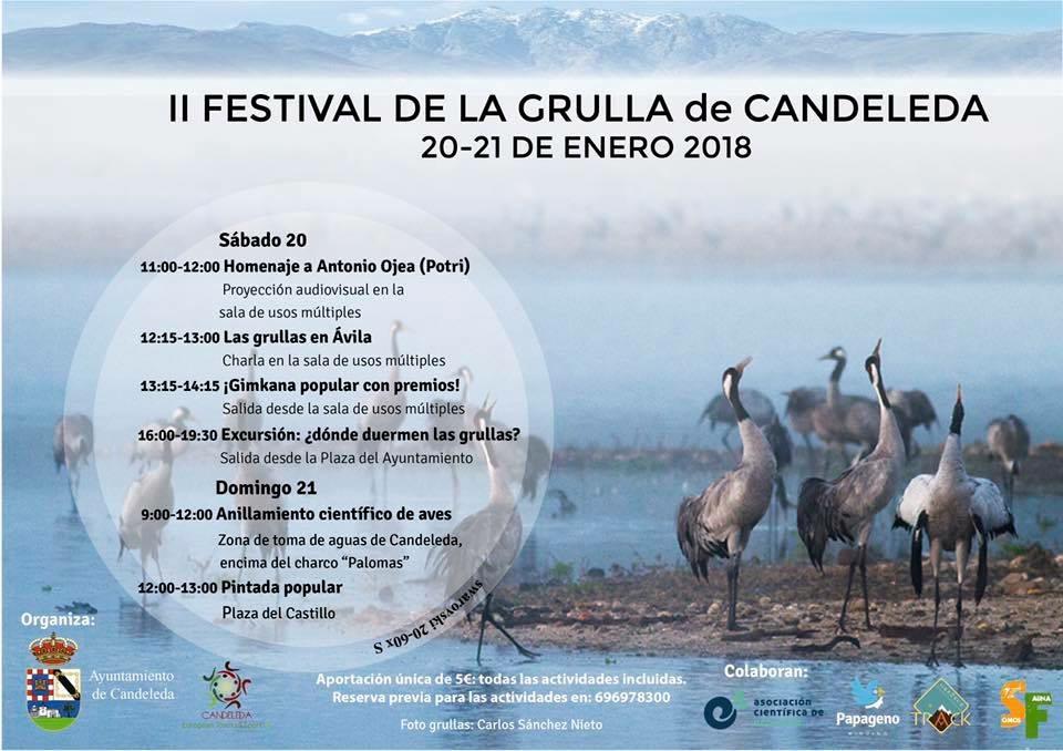 II Festival de la Grulla en Candeleda - TiétarTeVe