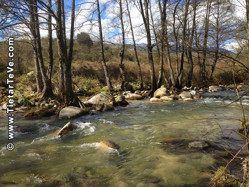 Río Ramacastañas o Prado Latorre - Ruta Playas Blancas - Pozos de Felipe - TiétarTeVe