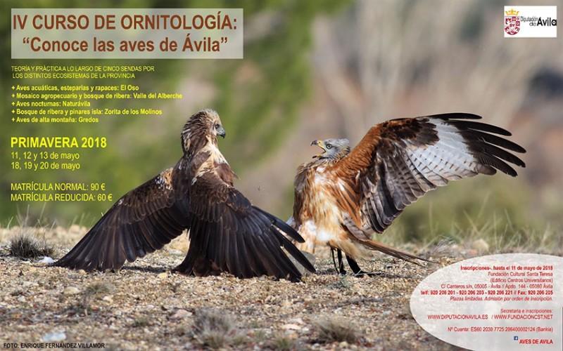 Curso Conoce las Aves - Diputación de Ávila - TiétarTeVe