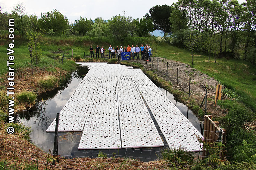 Proyecto Life Biomass C+ - El Arenal - TiétarTeVe