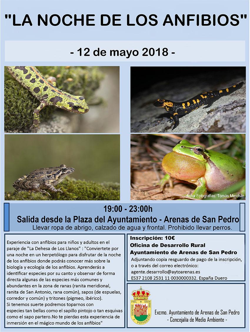 La Noche de los anfibios - Arenas de San Pedro - TiétarTeVe