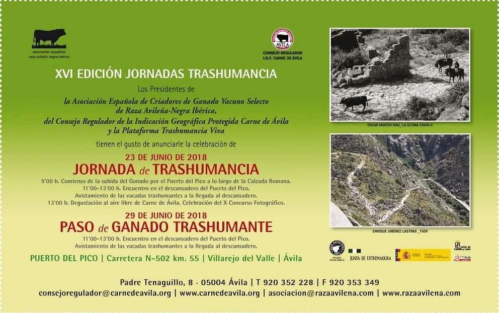 XVI Jornadas Trashumancia - Puerto del Pico - TiétarTeVe