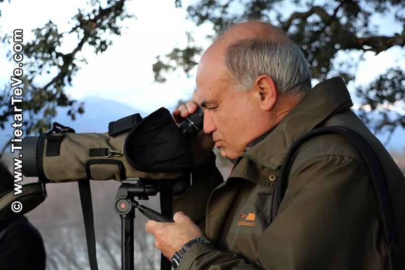 Web de Ornitología y Naturaleza - Candeleda - TiétarTeVe