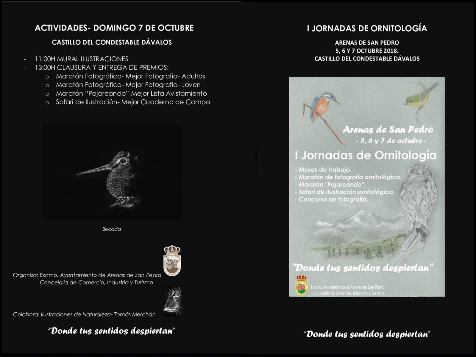 I Jornadas Ornitología - Arenas de San Pedro - TiétarTeVe