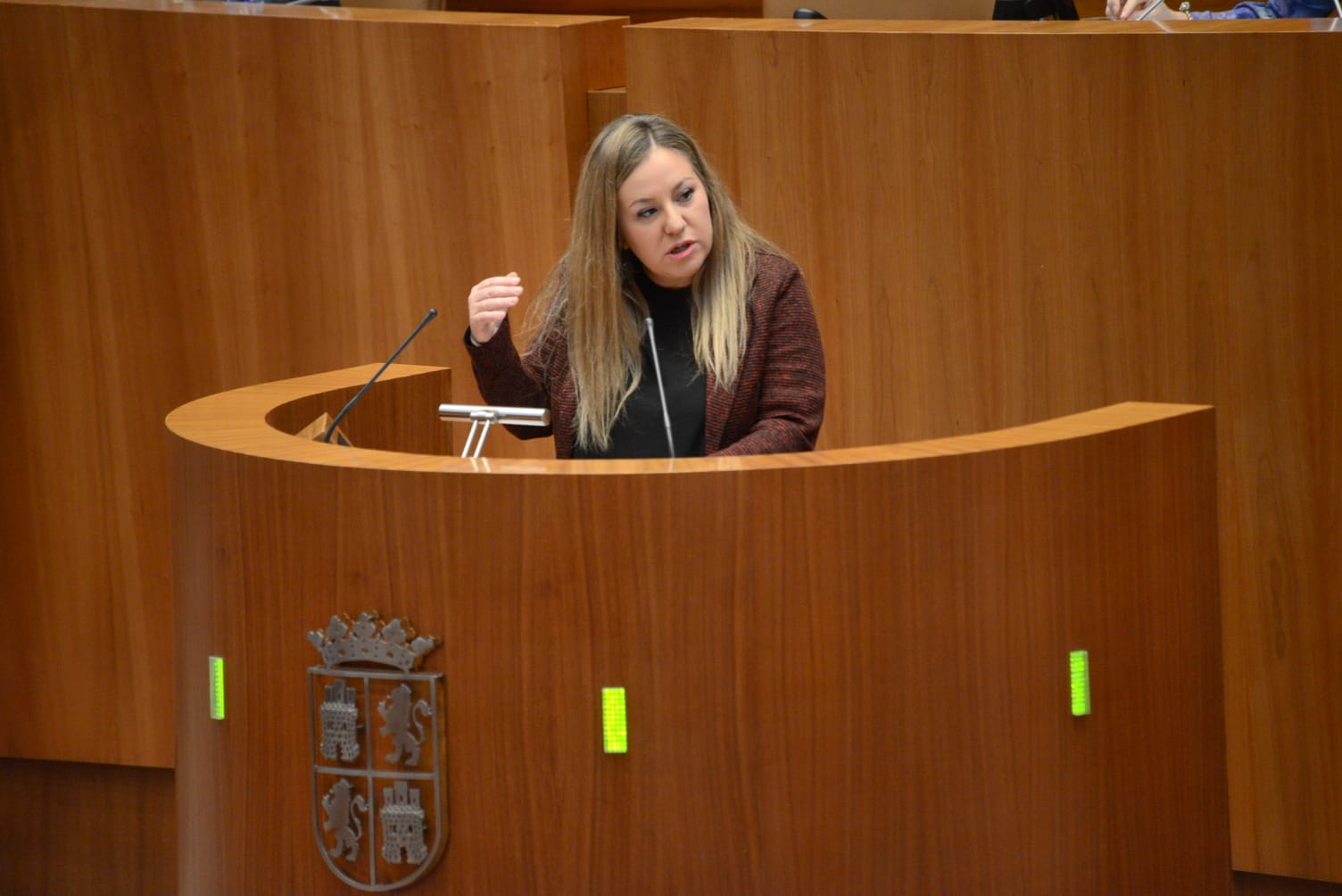 Belén Rosado - Procuradora Cs en CyL - TiétarTeVe