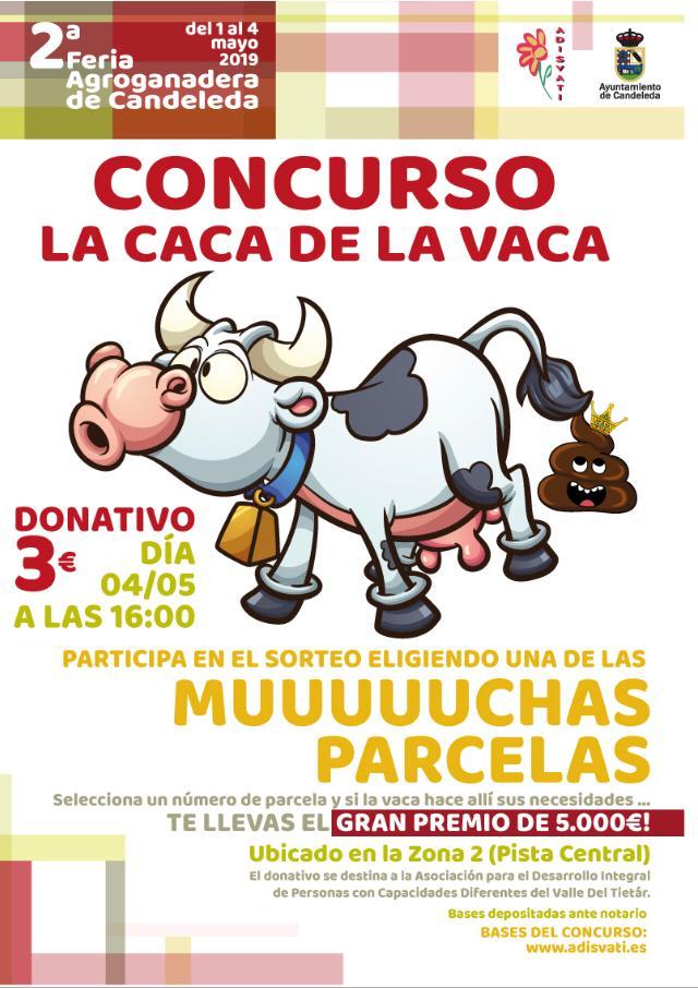 Concurso La Caca de la Vaca - Adisvati - Candeleda - TiétarTeVe