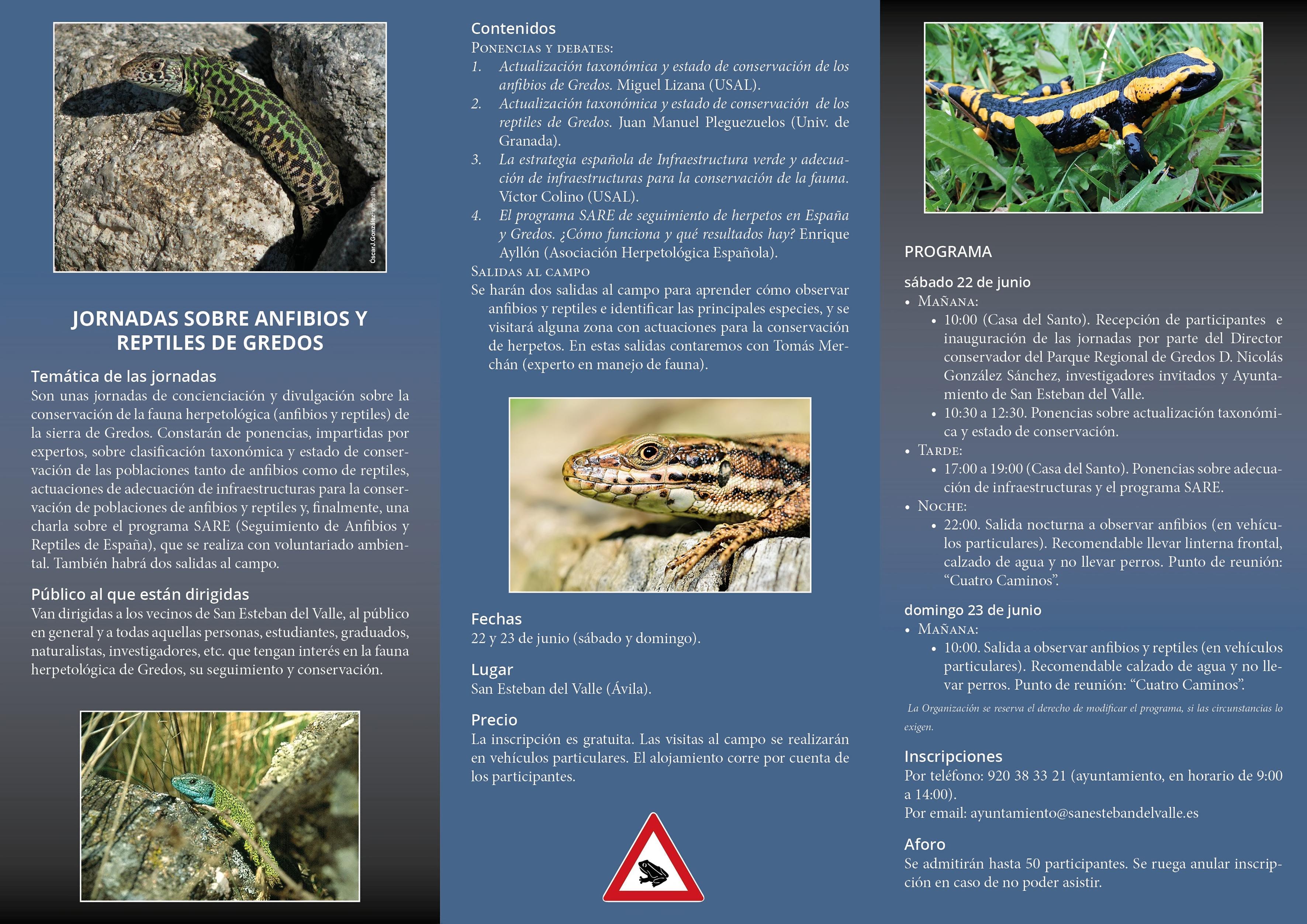 III Jornadas de Sensibilización Medioambiental - Anfibios y Reptiles - San Esteban del Valle - TiétarTeVe
