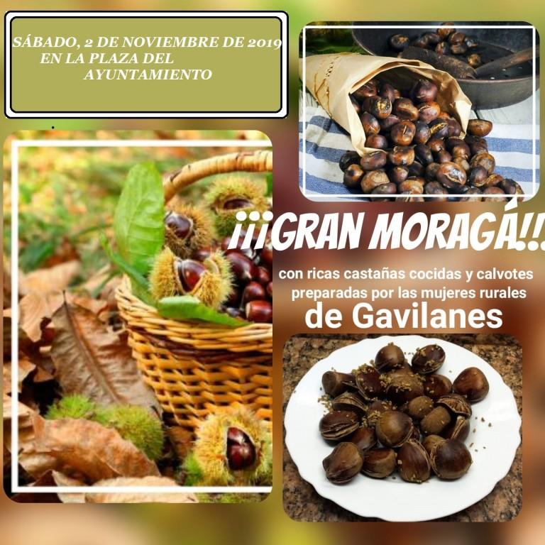 Moragá en Gavilanes - TiétarTeVe