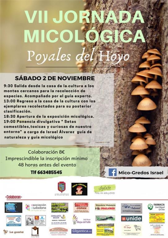 Jornadas Micológicas - Poyales del Hoyo - TiétarTeVe