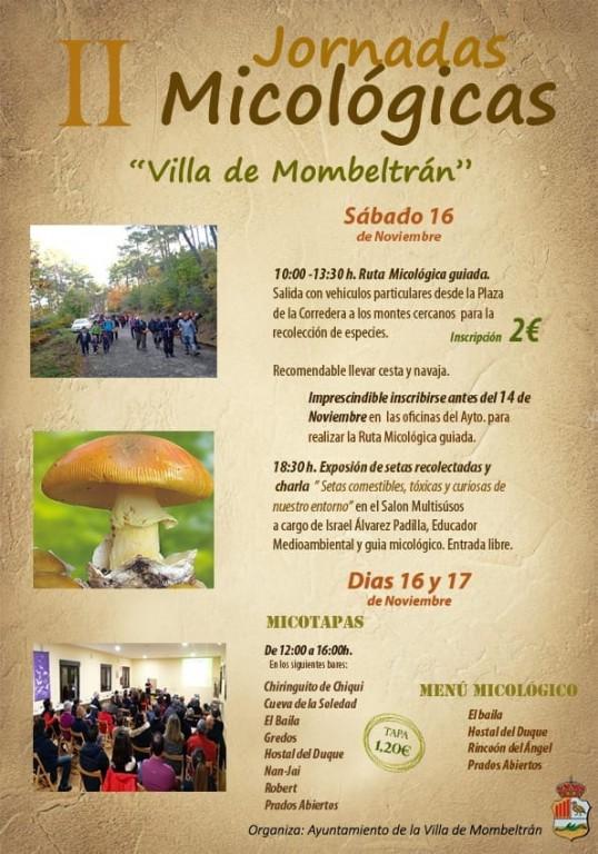 Jornadas Micológicas - Mombeltrán - TiétarTeVe