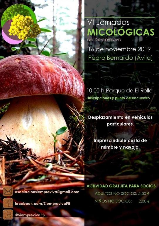 Jornadas Micológicas - Pedro Bernardo - TiétarTeVe