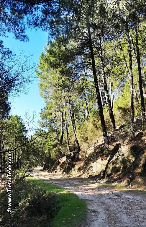 Ruta río Arbillas - TiétarTeVe