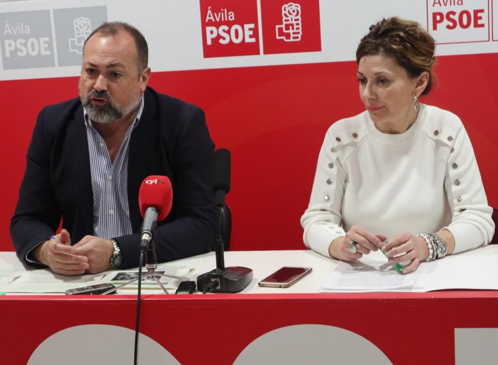 Procuradores del PSOE por Ávila - Castilla y León - TiétarTeVe
