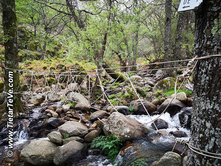 Puente de Cuerdas sobre el Arroyo de Castañarejo - Candeleda