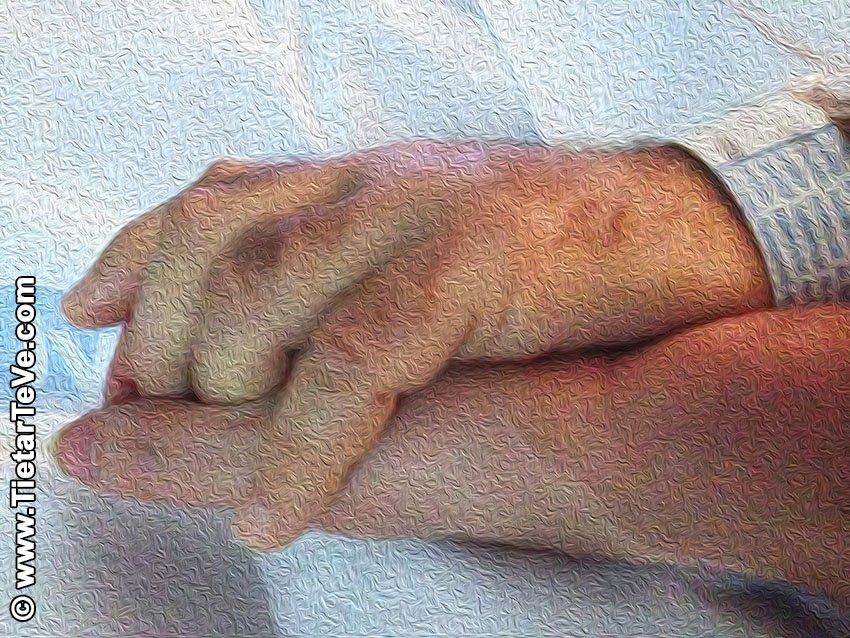 Acompañamiento de Pacientes en Hospitales de Castilla y León