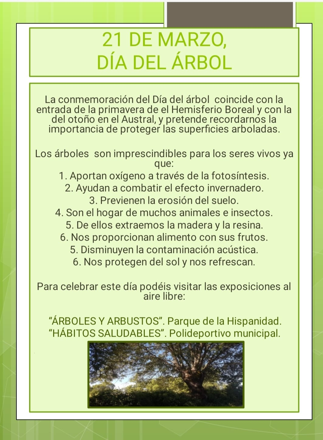 Día del Árbol en Lanzahíta - Semana Medioambiental