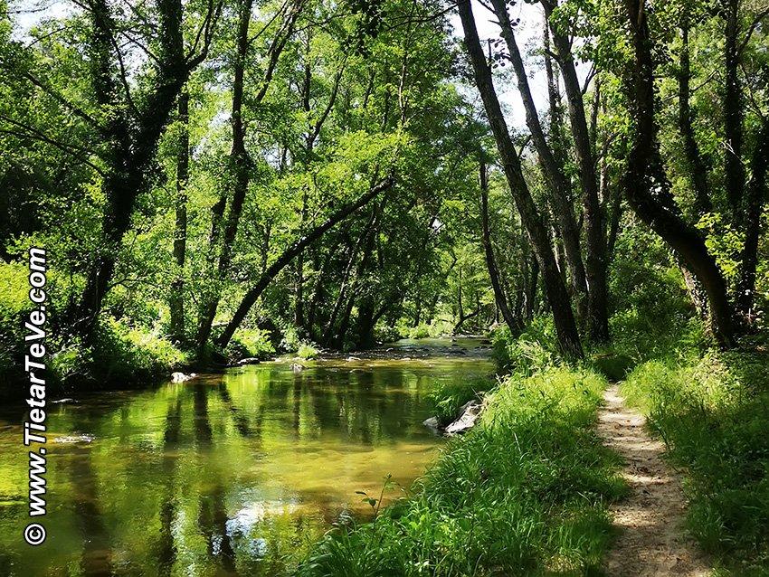 Senda del Río Ramacastañas