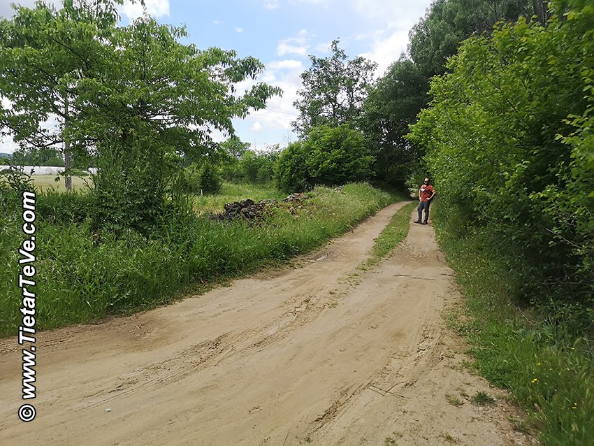Punto (14) - Cruce de caminos de vuelta de la Ruta del Río Ramacastañas