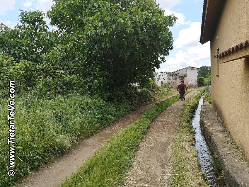 Entre los puntos (14) y (15) - Pista para llegar al Río Ramacastañas antes de la N-502
