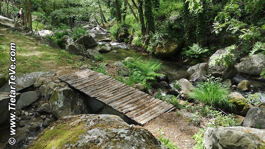 Puente de madera - Ruta Entre Ríos - El Arenal