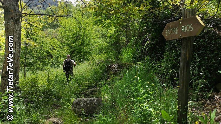 Ruta Entre Ríos - El Arenal